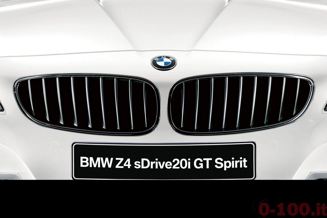 bmw-z4-sdrive20i-gt-spirit-prezzo-price-0-100_7