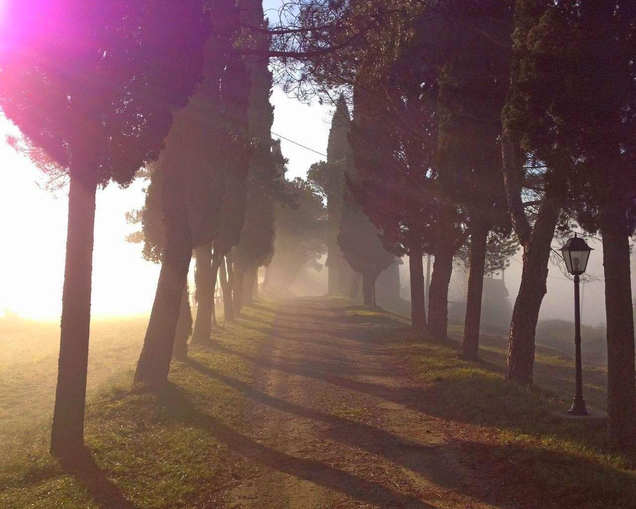 santa-felicita-paterna-turismo-umbria-agriturismo-vacanza-country-house-0-100_18