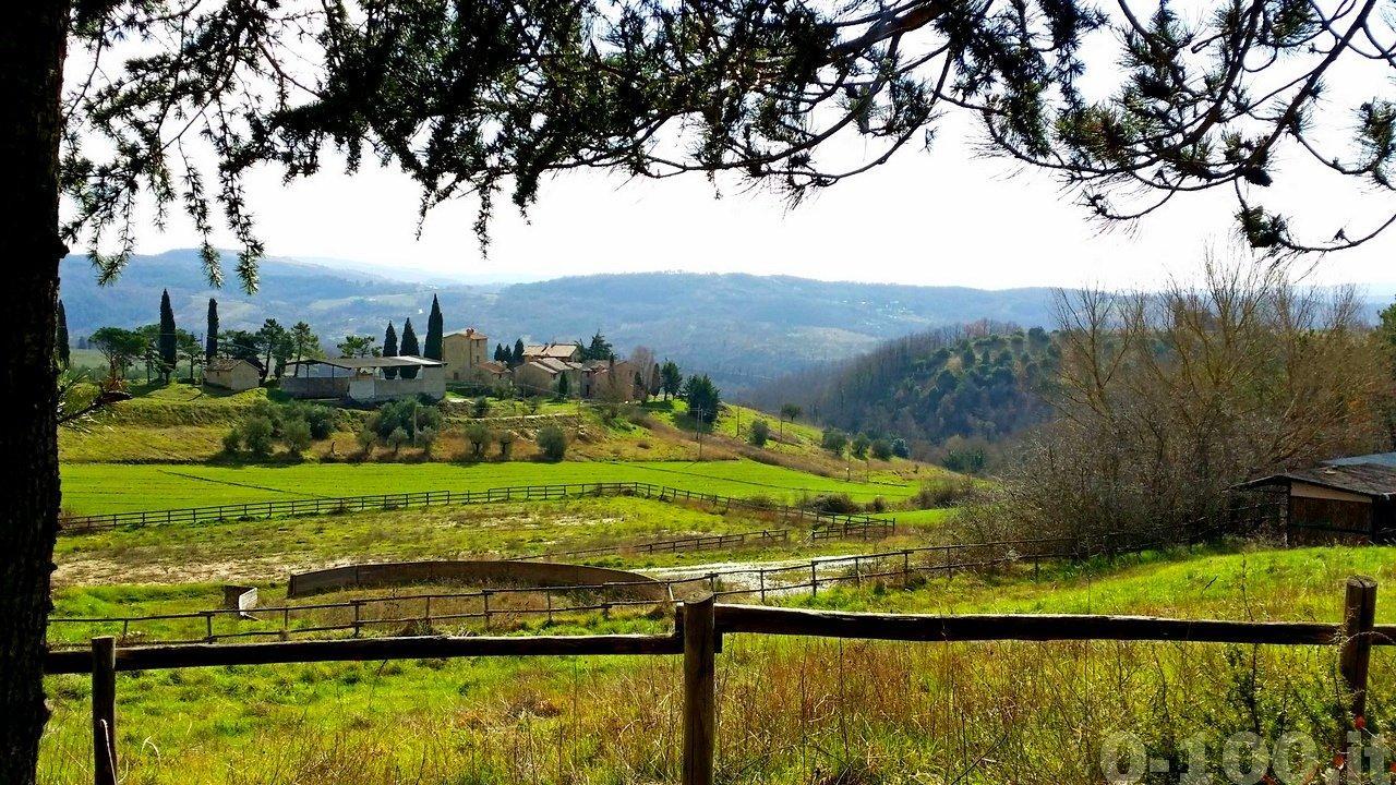 santa-felicita-paterna-turismo-umbria-agriturismo-vacanza-country-house-0-100__42